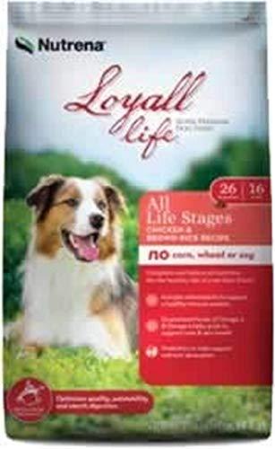 Loyall Life All Life