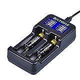 Batmax LCD Universal Intelligent USB Dual Battery