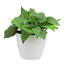 White Plant Pot Decorative Hanging Flowerpot Automatic Self-Watering Resin Pots Wall Hanging Planter, Size L