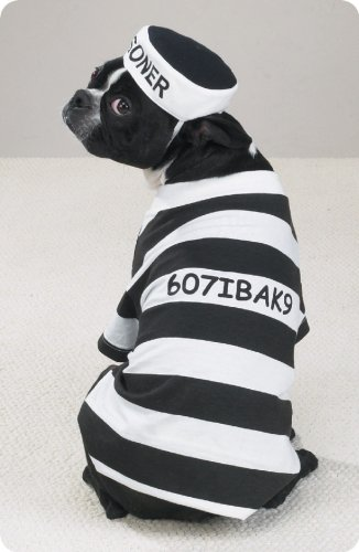 Dog Costume Prison Pooch Dog Halloween Costume Small