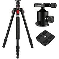 BC Master 75inch/10 Sturdy 2-in-1 Tripod Monopod Kit Aluminum Alloy TA533M Universal Dslr Camera Tripod with Carrying Bag, Ball Head, Bubble Level, Quick Release Plate for Canon Nikon, Weight: 4lbs