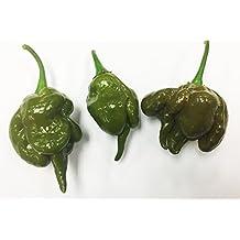 Mustard Green Trinidad Scorpion Hot Pepper Premium Seed Packet + More