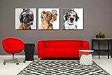 Dog Art - Cute Puppy Modern Animal World Headphones