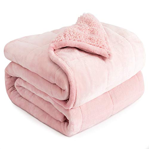 Cottonblue Weighted Blanket 15lbs, Sherpa Fleece Weighted Blanket, Fuzzy Sherpa Flannel Bedding Blanket Throw, Winter Blanket Minky Soft Blanket for Sofa Bed,48 x 72 inches, Pale Pink
