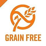 Purina Pro Plan Grain Free Pate Wet Cat Food, Beef