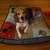 Amazon.com : Petmate Quilted Applique Dog Bed, Classic Dog