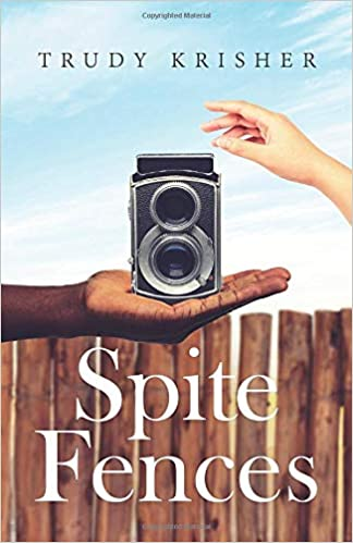 Black history books Spite Fences: A Story of Hope, Redemption and Justice in the 1960's South