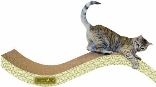 Imperial Cat Purrfect Stretch Scratch and Shape, Giant, Paisley by Imperial Cat
