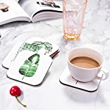 Tropical Plant Leaf Coasters for Drinks Set of