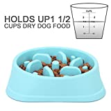 NOYAL Dog Slow Feeder Bowl, Non Slip Puzzle Bowl