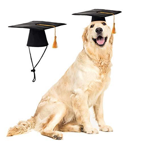 LKEX Pet Graduation Caps