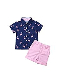 mettime Baby Boy Flamingo Tops T-Shirt & Pink Shorts Pants Toddler Kids Outfits Summer 1-6 T Clothes Set