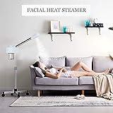 Professional Facial Steamer-Dakavia Ozone Steamer