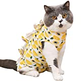 Stock Show Recovery Suit for Cats Mesh Cloth Fabric