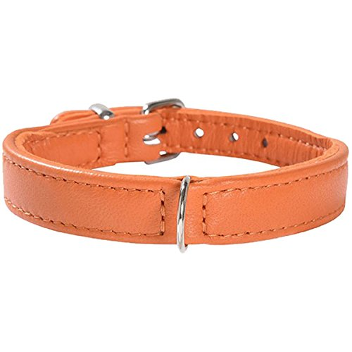 Bobby Escapade Collar, Size 40, orange