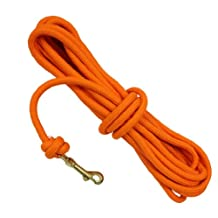 D.T. Systems Inc 3/8-Inch Blaze Orange Check Cord for Pets, 30-Feet