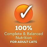 Purina Friskies Gravy Wet Cat Food Variety