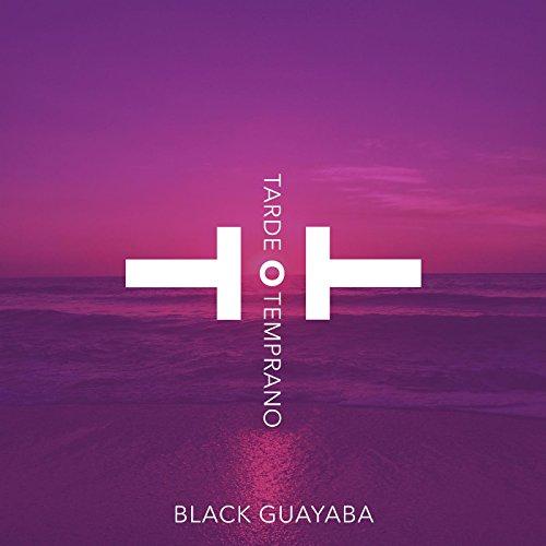 black guayaba una vida sin ti mp3