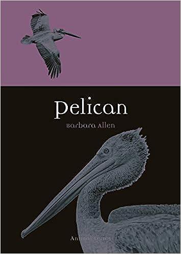 Pelican Animal Allen Barbara 9781789140750 Amazon Com Books