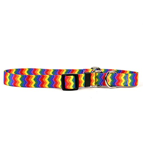 Yellow Dog Design Rainbow Chevron Martingale Dog