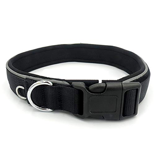 Reflective Adjustable Classic Solid Color Dog Collar