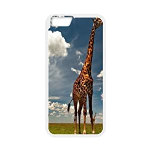 Hiqh quality soccers Hard Plastic Back Case Cover for For iphone Case 5C FKGZ440104