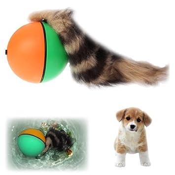 Jdon-pet, Pequeño juguete motorizado de la bola del cazador que rueda para el perro/gato/animal doméstico/cabrito: Amazon.es: Deportes y aire libre