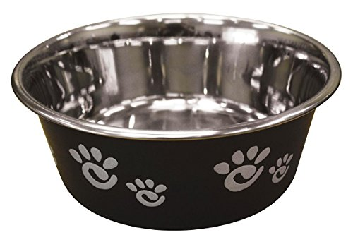 Ethical Pet Barcelona Matte and Stainless Steel Pet Dish, 32-Ounce, Licorice (Barcelona Bird Feeder)