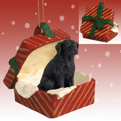 (Conversation Concepts Flat Coated Retriever Gift Box Red Ornament)