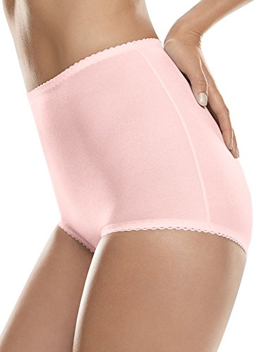 Hanes Shapewear Women's Control 2 Pack Shaping Brief, Light Pink/Light Pink, 4X