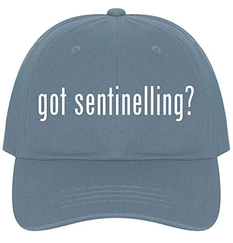 (The Town Butler got Sentinelling? - A Nice Comfortable Adjustable Dad Hat Cap, Light Blue)