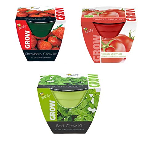 Lulus Online Shop Grow Pots - Flowers Sunflower, Coneflower, Daisies - Vegetables and Fruits Tomato, Basil, Strawberry - Pack of 3 (Fruits and Vegetables)