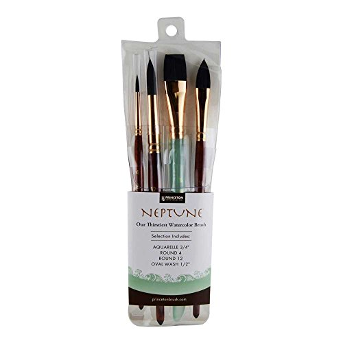 Princeton 4 Piece Professional Brush Set