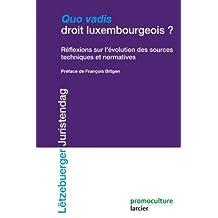Quo Vadis droit luxembourgeois: Réflexions sur l'évolution des sources et techniques normative (ELSB.HORS COLL.) (French Edition)