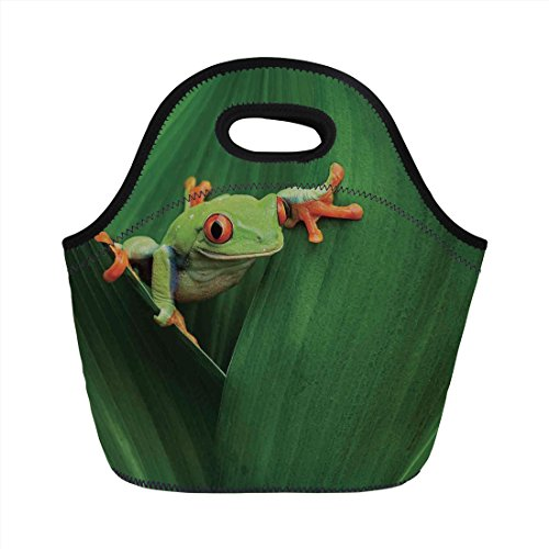leaf frog fridge - 5