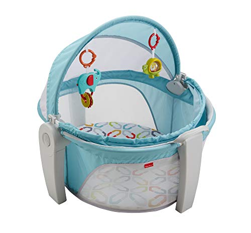 (Fisher-Price On-The-Go Baby Dome)