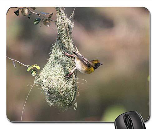 Mouse Pad - Bird Mysore India Deejayclix Tree Perched Weaver