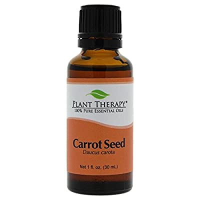 Plant Therapy Essential Oil - Carrot Seed By Plant Therapy For Unisex - 0.33 Oz Essential Oil