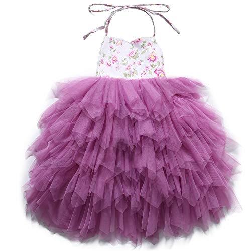 Occasion Girls Dress Tutu Birthday Wedding Party Princess Dress for Toddler (2, Purple) ()