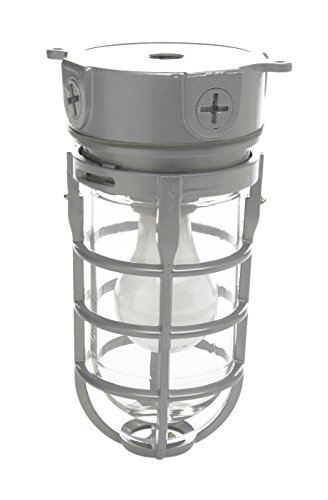 Woods Vandal Resistant Security Light With Ceiling Mount (150W Incandescent Bulb, Silver) ()