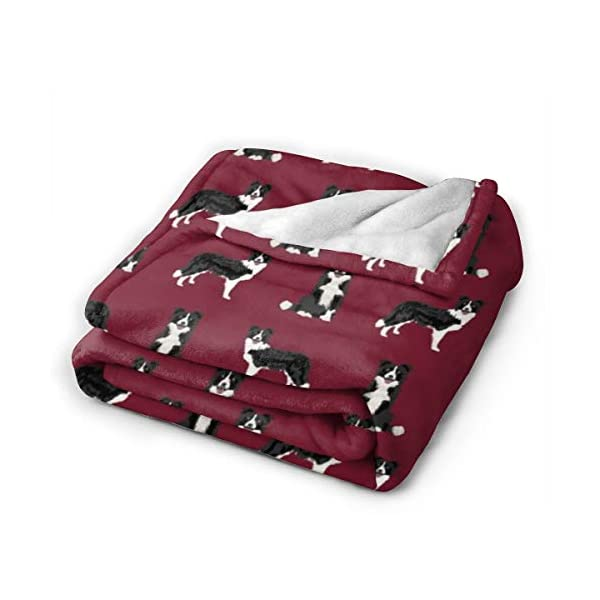ANJAY Throw Blanket - for Bed Couch Plush Suitable for Fall Winter and Summer (40x50 Inches) Border Collie Dog Breed Pet Lovers Sewing Projects Ruby 2
