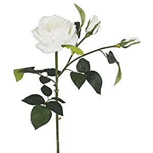"Meide Group USA 28"" Large Handmade Real Touch Cabbage Rose Artificial Spring Flower in Milky White with Thorns (1 PC) (Milky White) 28"