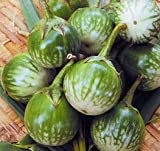 buy Eggplant Thai Round Green 250 seeds now, new 2018-2017 bestseller, review and Photo, best price $7.01