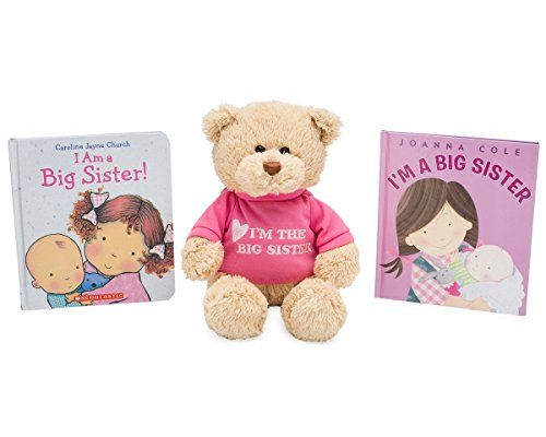 Big Sister Gift Set For Little Girls and Toddlers, Big Sister Bear, I'm a Big Sister Book by Joanna Cole and I am a Big Sister Book by Caroline Jayne Church (Big Sister Teddy Bear)