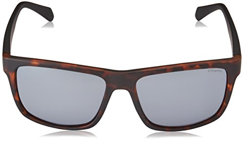 2058 Sonnenbrille S Polaroid Havana PLD Grey Matt Grey Marrón qpBnEnCw