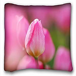 Custom Characteristic Nature Custom Zippered Pillow Case 16x16 inches(one sides) from Surprise you suitable for Queen-bed
