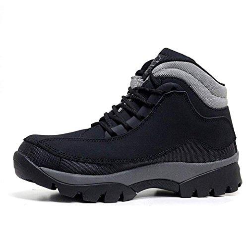 Black Footwear Homme Cuir Dessus Acier De À Sécurité Embout nbsp;léger 386 En Sensation Chaussures Lacets Gr86 rwrYqx5ZH