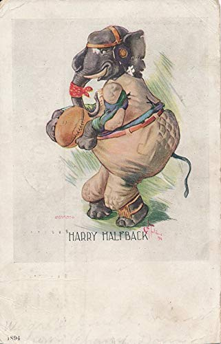Uhllman 1907 Postcard Dressed Animal Elephant Football Harry Halfback 138940 from Best Authentics