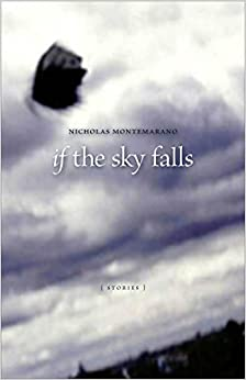 If the Sky Falls: Stories (Yellow Shoe Fiction)