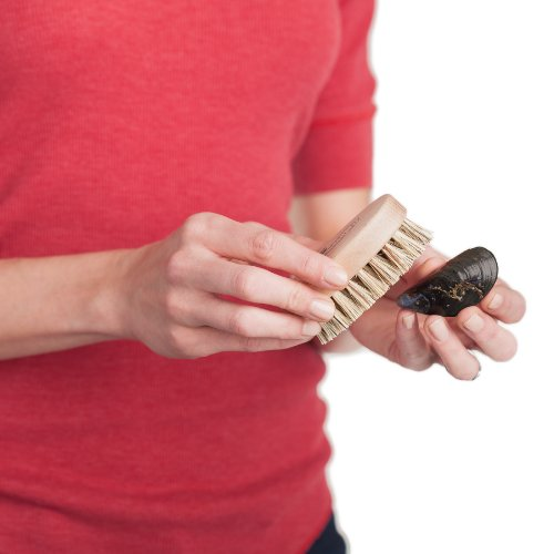 Redecker Mussel Brush with Natural Beechwood Handle, 3-3/4-Inches, Set of 2 by REDECKER (Image #4)'